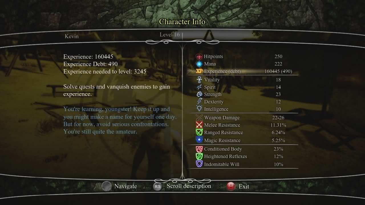 Divinity II: The Dragon Knight Saga (REQ: Save Editor